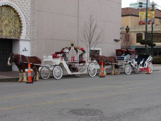 Ride the Carriages at the Plaza