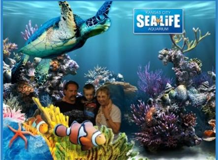 KC Sea Aquarium at Crown Center